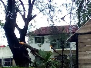 Temporal atinge cidade de Itabela (Foto: Welisvelton Cabral/CliC101)