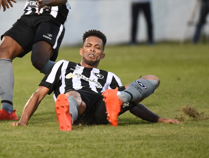 Luis Ricardo Botafogo (Foto: Andre Durão)