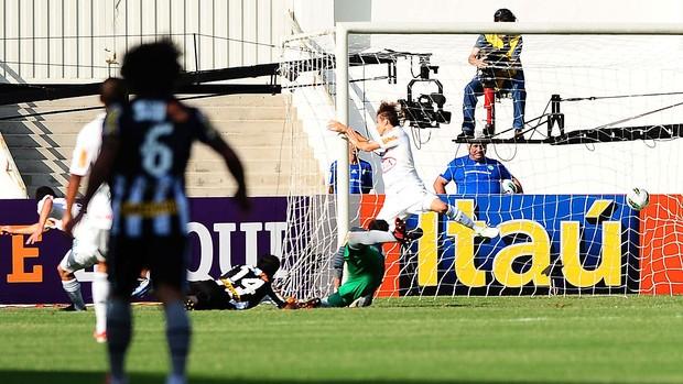jogo Palmeiras e Botafogo (Foto: Marcos Ribolli / Globoesporte.com)
