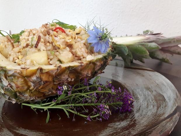 Arroz com abacaxi e tenébrios é uma das opções de receitas com insetos (Foto: Júlia Groppo/G1)