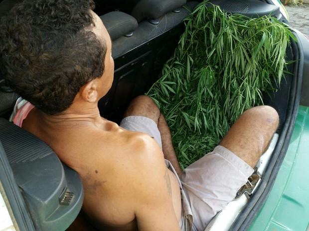 Operção Avast prendeu 36 pessoas por tráfico de drogas no Piauí  (Foto: Divulgação/PM)