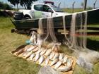 Barcos, motores e 110,7 kg de peixes são apreendidos em Rosana