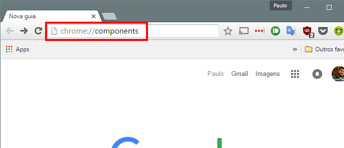 Acesse a lista de componentes do Chrome (Foto: Reprodução/Paulo Alves)
