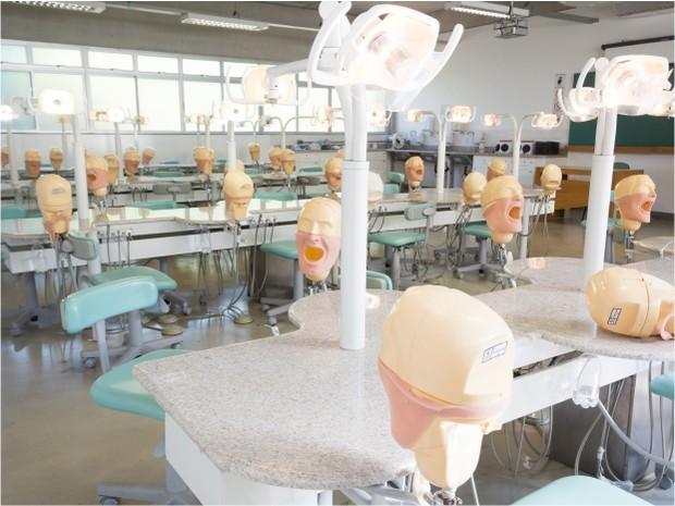 Laboratório de odontologia (Foto: Divulgação / Gisele Simões)