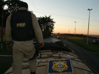 Cigarros seriam levados para Curitiba (Foto: Polícia Rodoviária Federal/Divulgação)