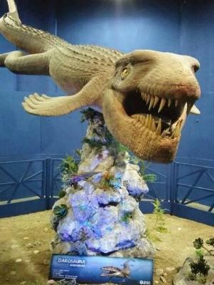 Mostra 'Gigantes Marinhos' é gratuita (Foto: Divulgação)