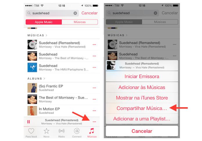 Acessando as opções de compartilhamento do Apple Music a partir da visualização de músicas (Foto: Reprodução/Marvin Costa)