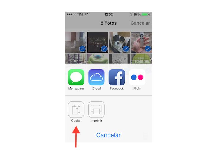 Copiando as imagens selecionadas no iOS (Foto: Reprodução/Marvin Costa)
