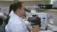 Pesquisa da USP descobre novo método para identificar e prevenir câncer de colo de útero