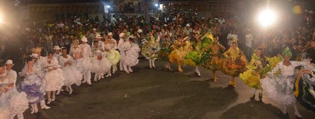 Público acompanhou atento cada coreografia realizada pelas agremiações  (Foto: Divulgação/Codecom)