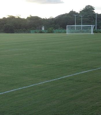 Gramado parece em boas condições para receber os jogadores do Tricolor (Foto: Thiago Pereira)