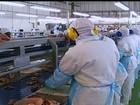 Justiça determina bloqueio de até R$ 1 bi de investigados na Carne Fraca