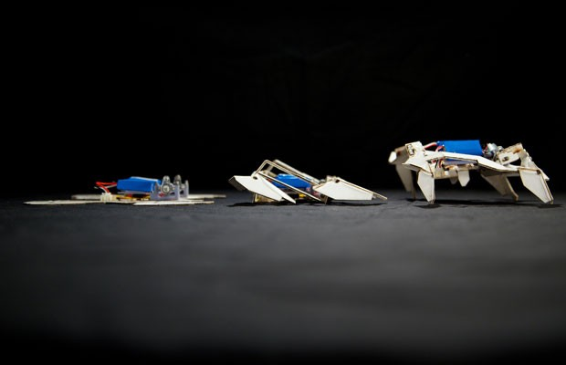 Robô-origami se desdobra sozinho antes de sair andando custa US$ 100. (Foto: Seth Kroll/Wyss Instituto/France Presse)