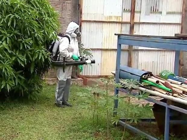 Agentes de endemias fazem nebulização em casas de São Carlos (Foto: Paulo Chiari/EPTV)