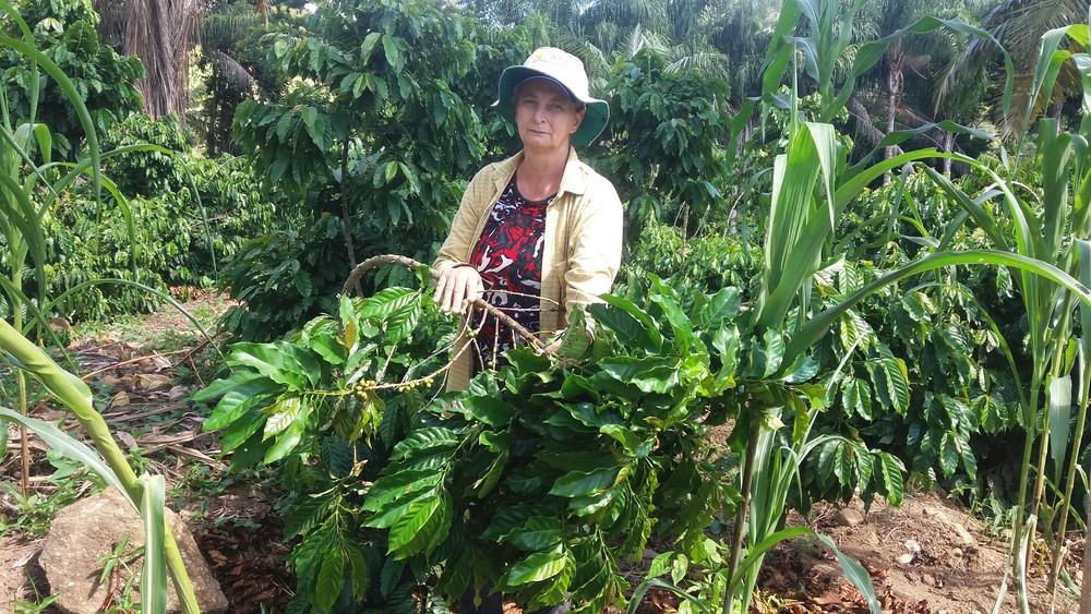 Alice Eque Nass espera que, neste ano, sejam produzidas 15 sacas de café na propriedade onde trabalha (Foto: Brunela Alves/ A Gazeta)