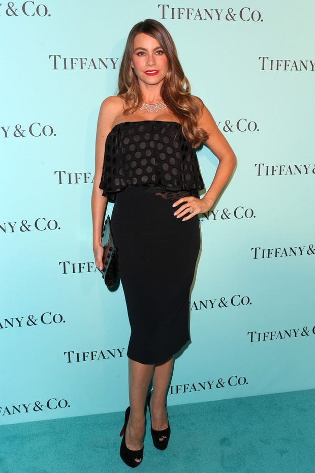 Sofia Vergara em evento em Los Angeles, nos Estados Unidos (Foto: Frederick M. Brown/ Getty Images/ AFP)