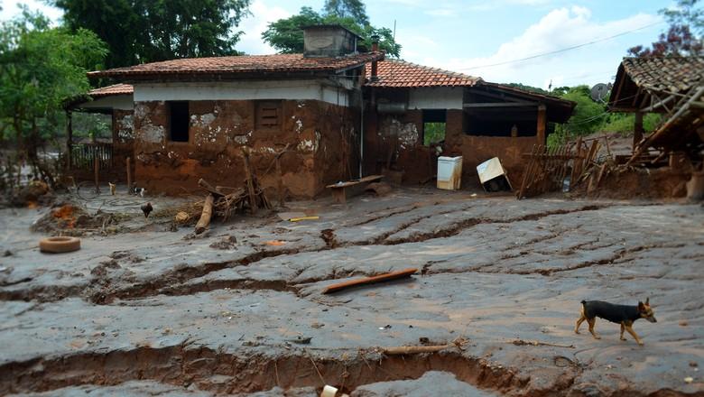 Algumas propriedades atingidas ficaram incapazes de produzir novamente (Foto: Divulgação Emater-MG)