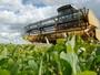 Cenário do agronegócio mundial será tema de seminário em Cuiabá (MT)