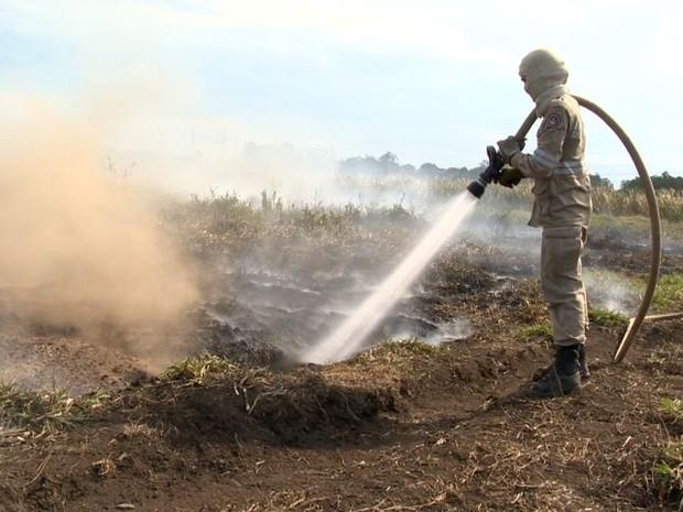 Incêndio recomeçou em turfa e bombeiros desconfiam de crime (Foto: Reprodução/ TV Gazeta)
