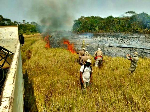 Área atingida pelo fogo (Foto: Divulgação/Corpo de Bombeiros)