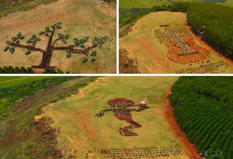 Uma árvore, uma viola e um saci foram as figuras formadas pela coreografia do Dança da Galera em Botucatu (Foto: Reprodução / TV Globo)