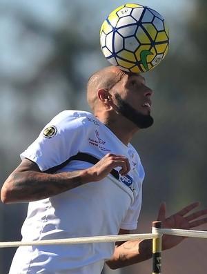 Paulinho - Santos (Foto: Ivan Storti/Divulgação SFC)