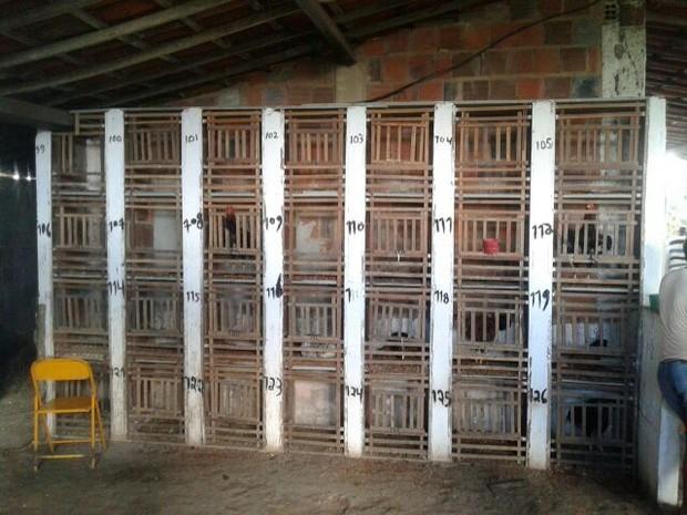 Na propriedade animais ficavam em cativeiro (Foto: Assessoria de Imprensa / Polícia Militar)