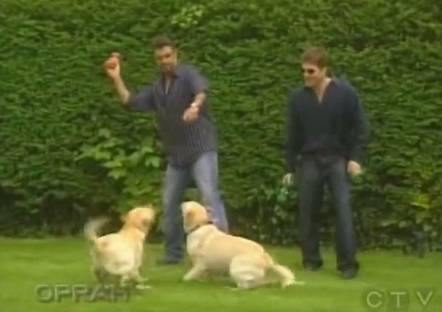George Michael brinca com seus cachorros (Foto: Reprodução)