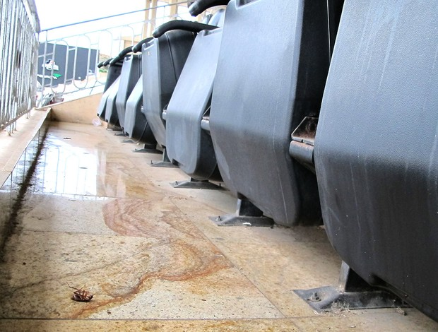 sujeira estádio São Januário Vasco (Foto: Gustavo Rotstein / Globoesporte.com)