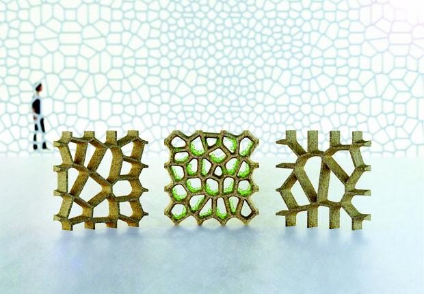 1º lugar na categoria Prototipo - Leaf Brick  (Foto: Foto: Natalia Queiroz)