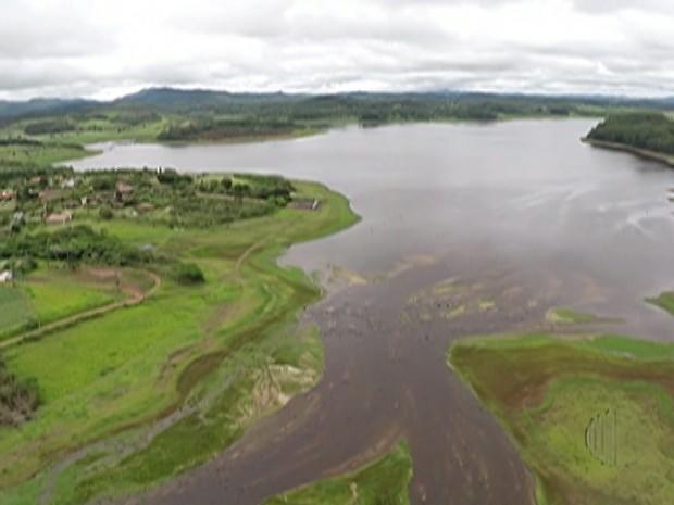 Cerca de 10 mil árvores devem ser plantadas à esquerda do Paraitinga (Foto: Reprodução/ TV Diário)