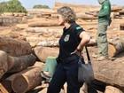 Sete são presos em MT suspeitos de desmatar floresta na região Norte