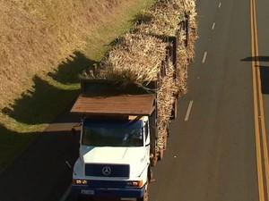 Carga desprotegida gera multa e até apreensão de caminhão (Foto: Felipe Lazzarotto/EPTV)