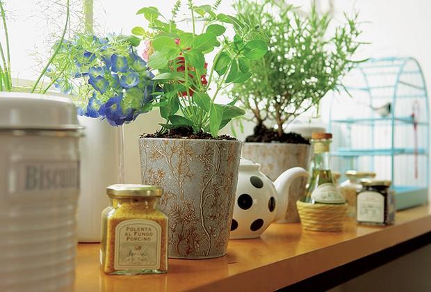Na altura da janela, a prateleira de MDF apóia o azeite, as ervas em vasos da L'Oeil e até a gaiola da Coisas da Doris. Bule, porta-temperos e jarra branca com flores do Espaço Santa Helena (Foto: Codo Meletti e Marcelo Magnani)