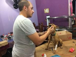 Victor Hugo Fernandes está cuidando do tratamento do cachorro (Foto: Victor Hugo Fernandes / Arquivo Pessoal)