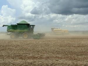 Colheita de soja em Mato Grosso do Sul (Foto: Anderson Viegas/G1 MS)