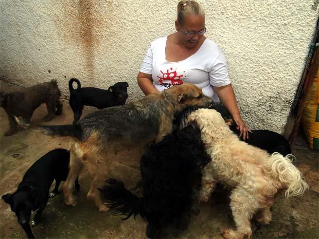 Valéria é cercada por alguns dos 17 cães resgatados em Ribeirão  (Foto: Eduardo Guidini/ G1)