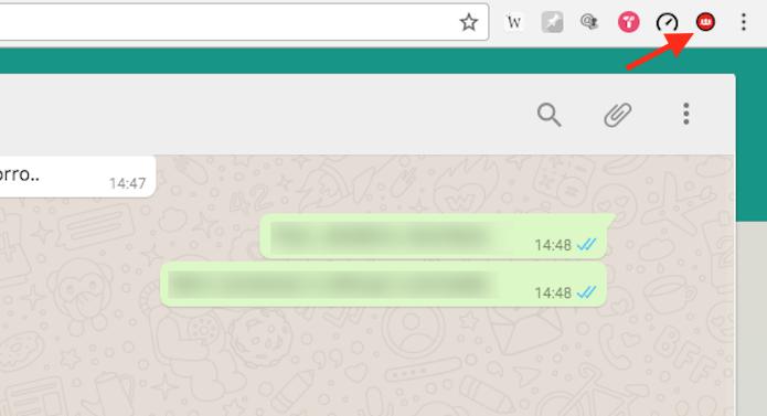 Ícone da extensão Grupos para WhatsApp no Google Chrome (Foto: Reprodução/Marvin Costa)