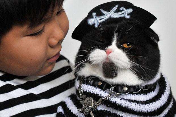 Gato chamou atenção ao usar uma fantasia de pirata. (Foto: Vyacheslav Oseledko/AFP)