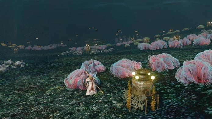 Colete itens até mesmo embaixo d água (Foto: Divulgação)