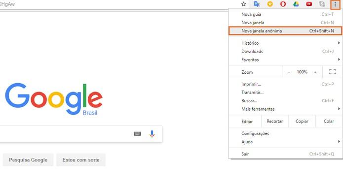 Acesse uma aba privada no seu navegador pelo PC (Foto: Reprodução/Barbara Mannara)