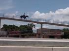 Homem em cavalo é flagrado usando passarela de pedestres, em GO; veja
