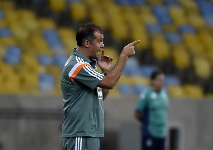 Eduardo Baptista Fluminense x Goiás (Foto: André Durão)