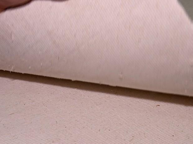 O produto final é uma pasta de celulose, que servirá de matéria-prima para a fabricação (Foto: Reprodução TVTEM)