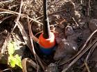 Funcionários denunciam abandono de dinamites enterradas em Alagoas