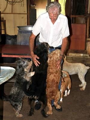 idoso faz carinho em cães que vivem em chácara (Foto: Fabio Rodrigues/G1)