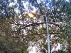 No DF, leitora flagra lâmpadas de postes acesas durante o dia
