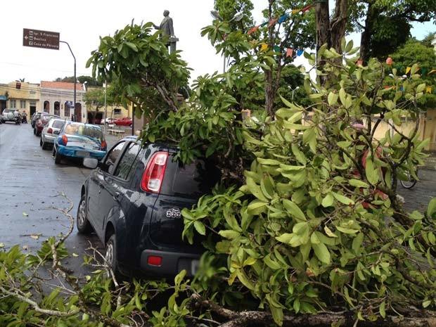 Uma árvore caiu e atingiu um carro estacionado na Praça Dom Adalto, Centro de João Pessoa, por volta das 11h30 desta segunda-feira (20). De acordo com testemunhas, não houve feridos. O motorista não estava no carro no momento da queda. As chuvas que atingem a capital paraibana nesta segunda podem ter causado o tombamento da árvore. O trânsito na Avenida Visconde de Pelotas não ficou interditado.  (Foto: Walter Paparazzo/G1)