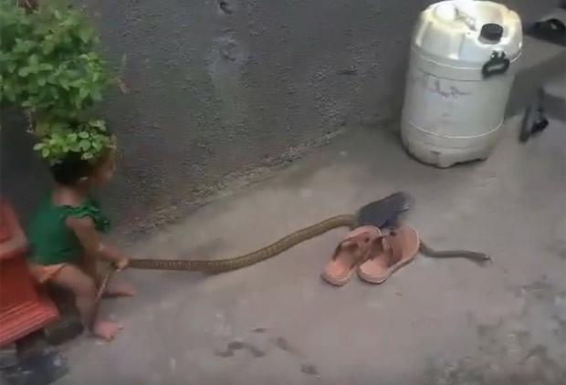 Menina foi filmada puxando o réptil seguidas vezes enquanto o animal tenta se afastar (Foto: Reprodução/YouTube/Dmax)