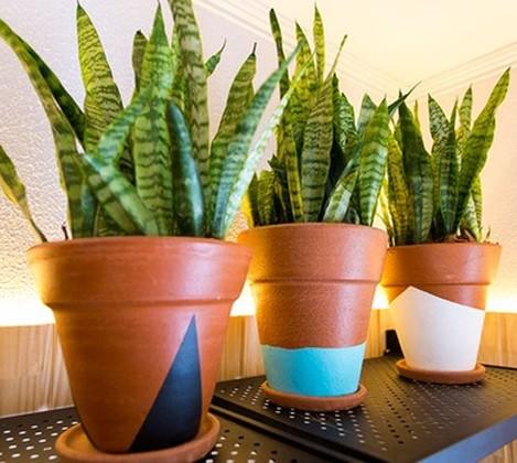 [Destaques] Aprenda a customizar vasos de barro da sua horta doméstica